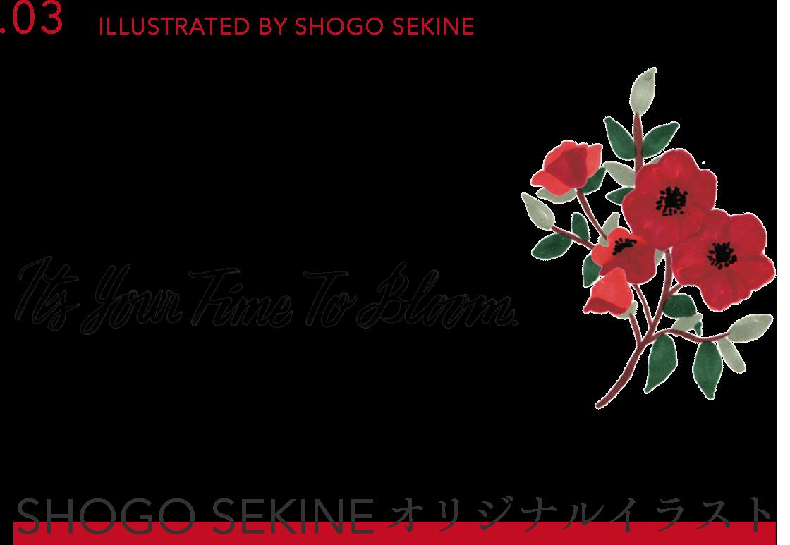 .03 ILLUSTRATED BY SHOGO SEKINE